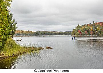 canoë-kayac, sur, a, lac, dans, automne, -, algonquin parc provincial, ontario, canada