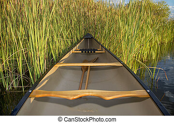 canoe and cattails - canoe on a lake shore with cattails, ...