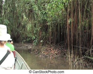Canoe the Amazon
