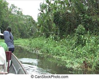 canoeing, de, amazone, rivieren