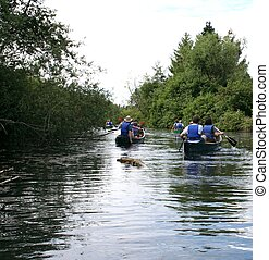 Canoeing - group of people canoeing in Mercer Slough which...