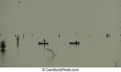 canoes in lagoon - dugout canoes in the Ouidah lagoon in...