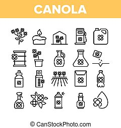 Canola Agricultural Collection Icons Set Vector. Canola ...