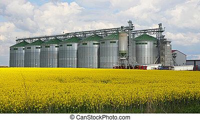 Canola oil silo - Rapeseed field and silo at farm