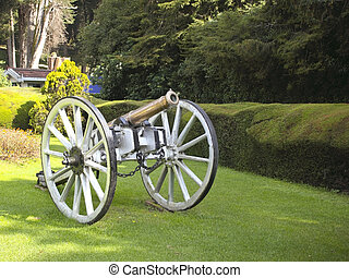 canon in botanical gardens - a canon in the botanical...