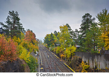 Canopy of trees with Spring colors on each side of railway tracks in Oslo Norway during one such season in 2015