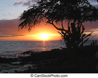 Hawaiian Sunset - A beautiful sunset on maui