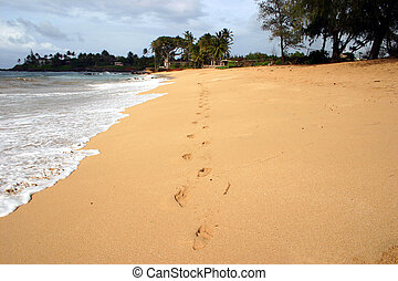 Footprints in the sand - Footprints on a beach in Maui.