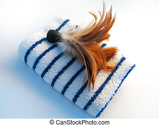 Towel, brush - Feather brush sitting on top of a blue and...