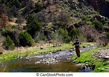 Fisherman 4495 - Fisherman fly-fishing for trout on a...
