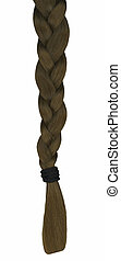 Hair Braid - A braid of long hair