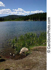 Day's Catch 7322 - Spring day at O'Haver Reservoir outside...