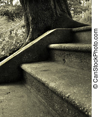 Juxtaposition - Some stairs somewhere in Saratoga Springs.