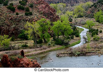 Confluence 4960 - The point at which Grape Creek enters the...