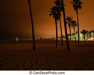 Venice beach by night, L.A., California