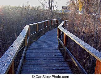 Riverwalk Bridge 81 - Ice crystals form pattern on wooden...