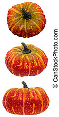 Squash Trio - Set of three fall colored hand painted...