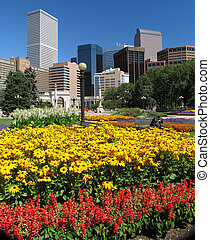 City - Buildings and flowers