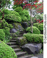 Japanese Garden - Japanese garden with stairs and red maple...