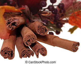 Cinnamon Bundle - Bundle of cinnamon sticks surrounded by...