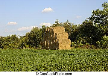 Haystack - Photo of a Haystack.