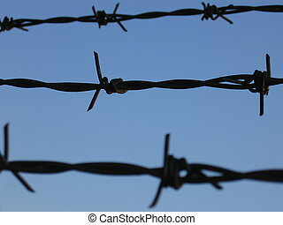 Barbed Wire - Barbed wire against a blue sky.