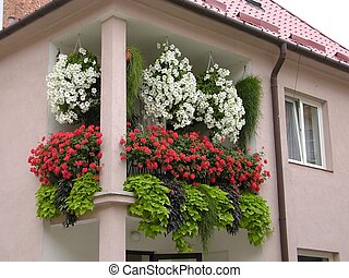 Balcony - Flowers on balcony