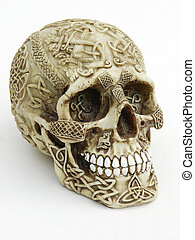 Carved Skull - Human skull carved with celtic designs