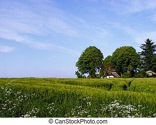 farm - in a fertile surrounding