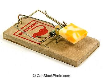 Mousetrap - Photo of a Mousetrap.