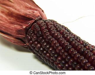 granaglie, rosso