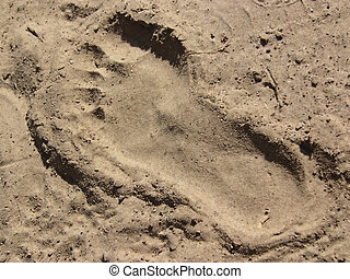 foot print in and