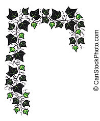 Green Ivy Border - ivy border illustration