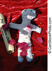Voodoo Doll #4 - voodoo doll with instructions and pins in...