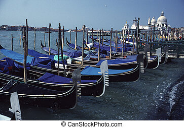 Venice Gondolas at Shores of Grand Canal