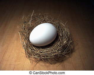 Great Expectations - Large egg in a small nest