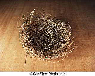 Empty Nest - Birds nest empty on a maple background
