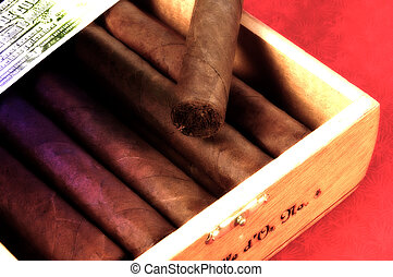 Cigarros, 4