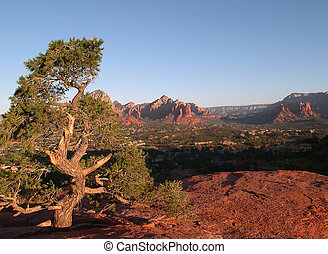 Sedona Desert Scene - outlook on Sedona Arizona