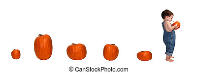 Pumpkin Trail - Small boy walking away from a line of...