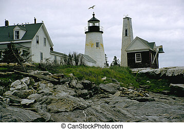 Lighthouse and gull - A New England lighthouse with gulls