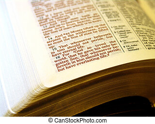 Holy Bible John3:16 - Close-up of the the Bible and the...