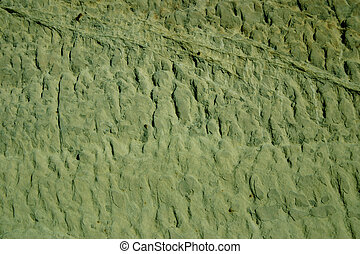 Green Background - Green background with a prehistoric...