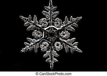 Snowflake - White snowflake on the black
