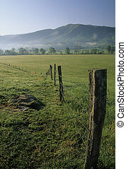 Fence, Cades Cove - Fence, Spring Landscape, Cades Cove,...