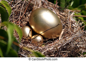 Nest Egg 2 - real bird nest in a tree with golden eggs...