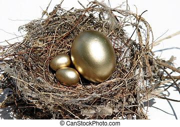 Nest Egg #3 - real bird nest with golden eggs inside...