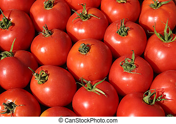 farmers market 5 - Fresh red vine ripe tomatoes with nice...