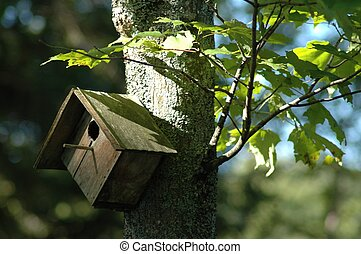 Birdhouse in Summer - A photograph I took of the birdhouse...