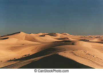 Sand sea - Dunes in Algerian Sahara